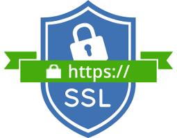ssl certificate from papa internet
